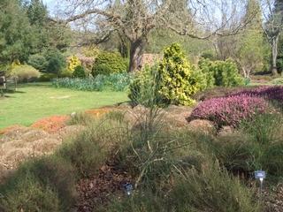 hilliers garden