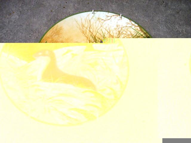 ロイヤルドルトン(Royal Doulton)  ウォールプレート  A stoat on the Alert 箱付き シリアルナンバー入り アンティーク 飾り用プレート